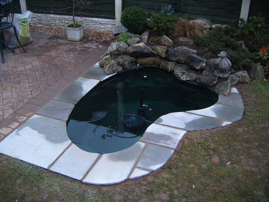 Carter 39 S Ponds And Landscapes Ponds And Water Features